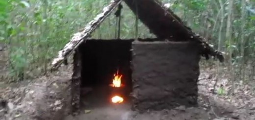 Building a primitive wattle and daub hut from scratch