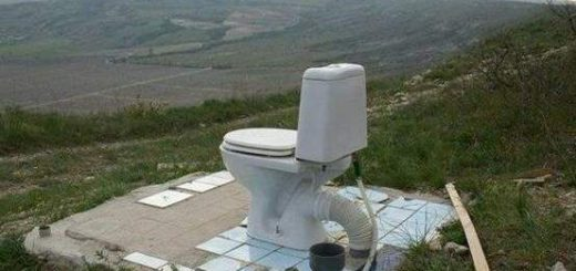 최상의 뷰를 제공하는 화장실들